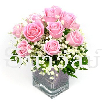 12 Pink roses in a glass vase