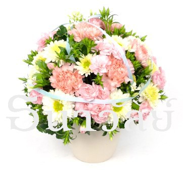 arrangement 1201