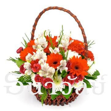 Red blooming basket