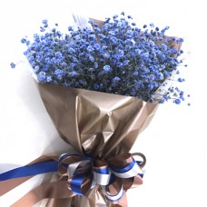 Blue gypsophila